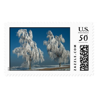 Winter-Landscape Postage