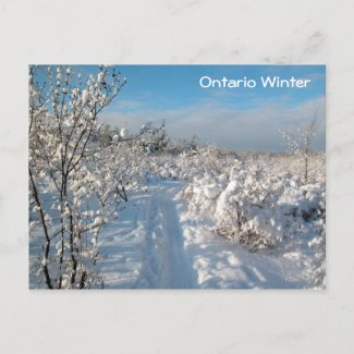 Winter Landscape - Postcard postcard
