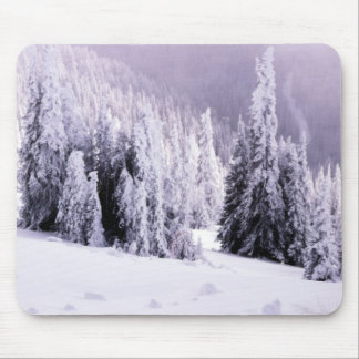 Winter  landscape scene mouse pad
