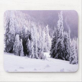 Winter  landscape scene mouse pad