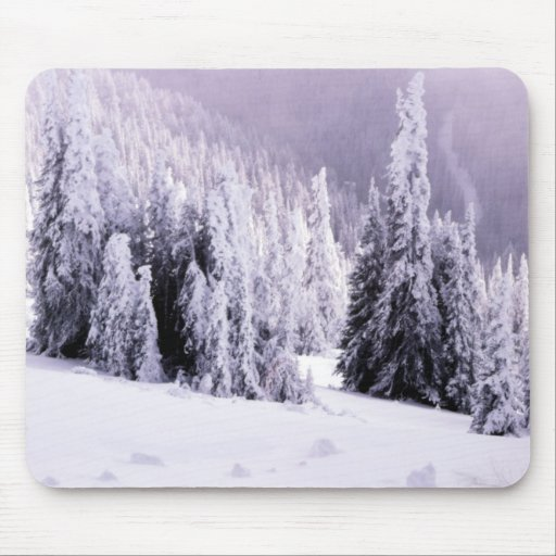 Winter  landscape scene mousepads