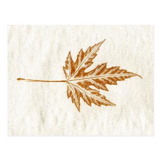 """Winter Leaf #4"" Country Roads Postcard"