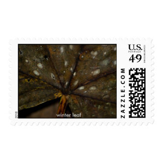 winter leaf stamp