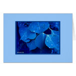 Winter Leaves Greeting Cards
