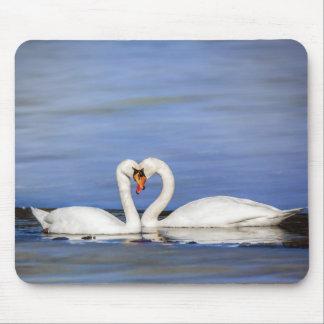 Winter Love Swan Couple Mousepad