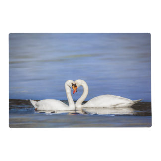 Winter Love Swans Laminated Placemats