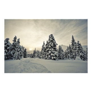 Winter Magic Stationery