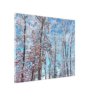 WINTER MAGIC/TREES AFTER SNOW FALL CANVAS PRINT