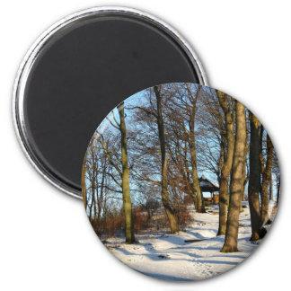 winter magnet