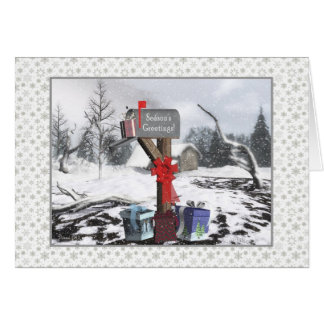 Winter Mailbox Season's Greetings To Mail Carrier Greeting Cards