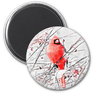 WINTER MALE CARDINAL 2 INCH ROUND MAGNET