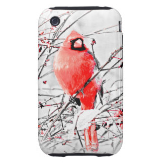 WINTER MALE CARDINAL iPhone 3 TOUGH CASE