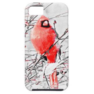 WINTER MALE CARDINAL iPhone SE/5/5s CASE