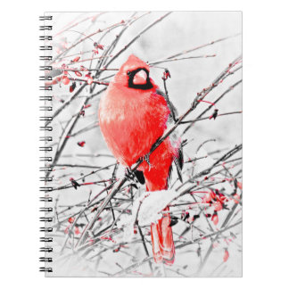 WINTER MALE CARDINAL NOTEBOOK
