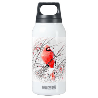 WINTER MALE CARDINAL THERMOS WATER BOTTLE
