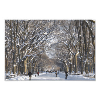 Winter Mall Central Park Photographic Print