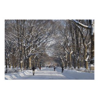 Winter Mall Central Park Poster