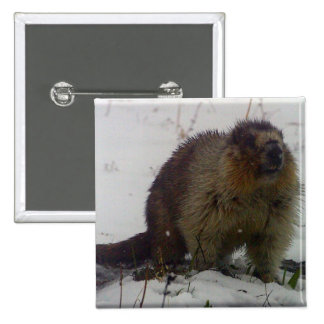 Winter Marmot Button