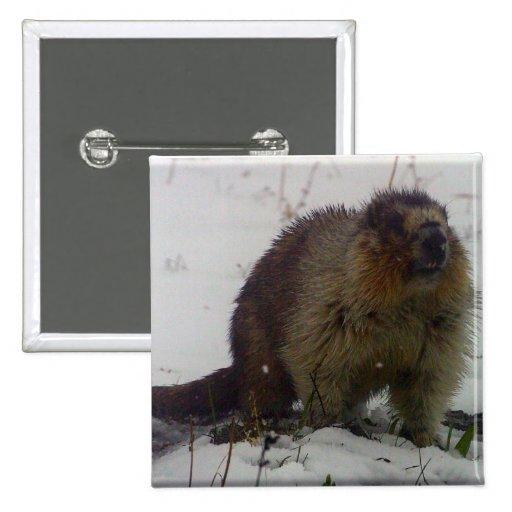 Winter Marmot Button