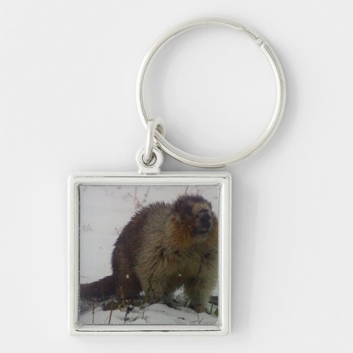 Winter Marmot Keychains
