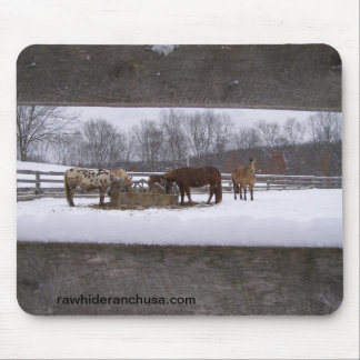 Winter meal mousepad