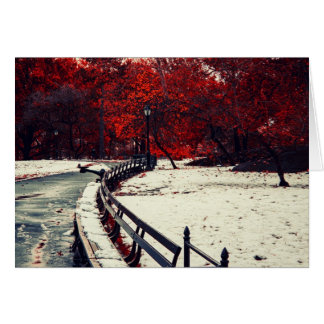 Winter Meets Fall in Central Park, NYC Greeting Card