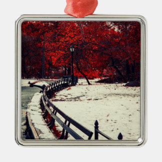 Winter Meets Fall in Central Park, NYC Ornament