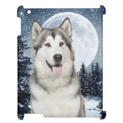 Case Savvy Glossy Finish iPad Case with Siberian Husky Phone Cases design