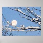 Winter Moon Print