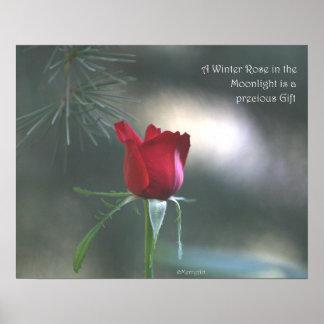 WInter Moonlight Rose Poster: ROSE & PROSE 20x16 Poster