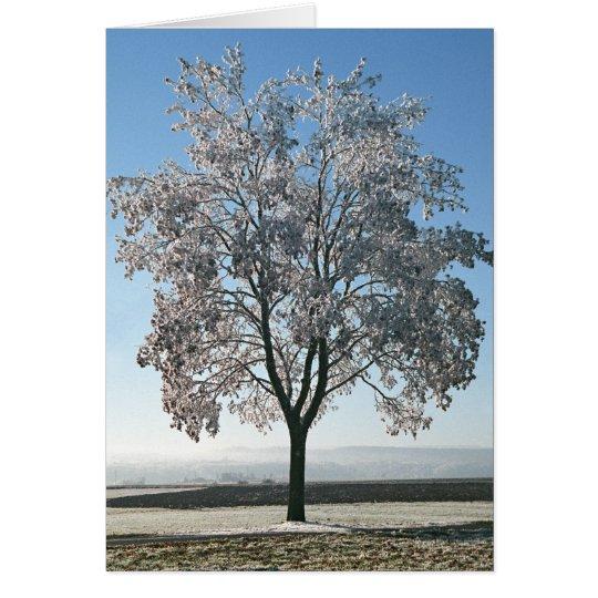 Winter Morning - Blank card