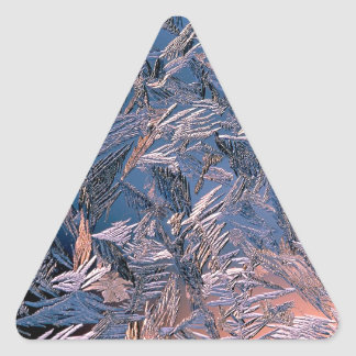 Winter Morning Frost Triangle Sticker