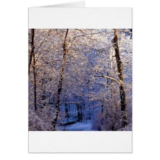 Winter Morning Light Falls Trail Nashville Card