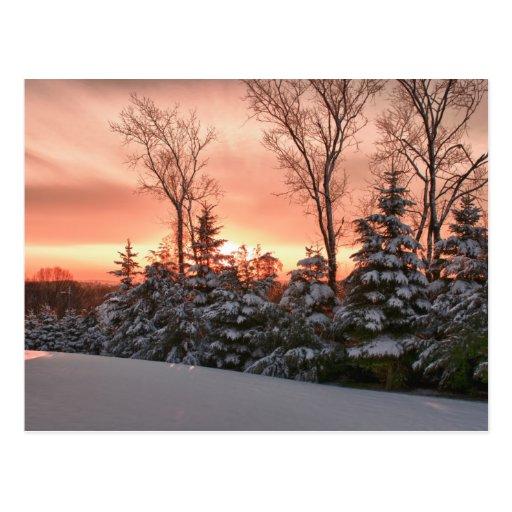 Winter morning sunrise postcard