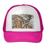 Winter - Natures Harmony - Painted Trucker Hat