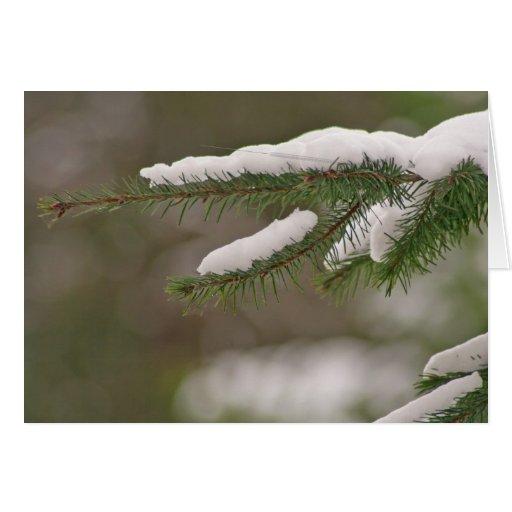 Winter Needle Card