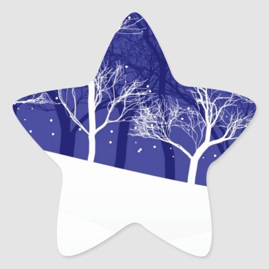 Winter Night Star Sticker