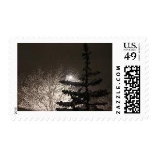 Winter Nightscape Postage