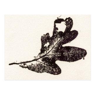 """""""Winter Oak Black"""" Country Roads Postcard"""