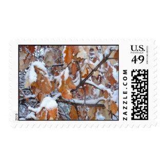 Winter Oak Leaves Postage Stamps