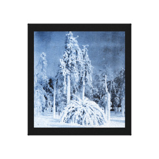 Winter of 1911 at Prospect Park Canvas Print