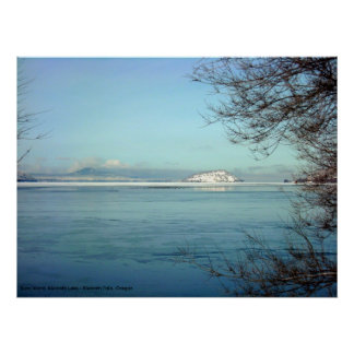 Winter on Bare Island Poster