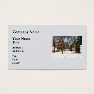 Winter on My Street Business Card
