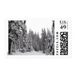 Winter Oregon Forest Stamp