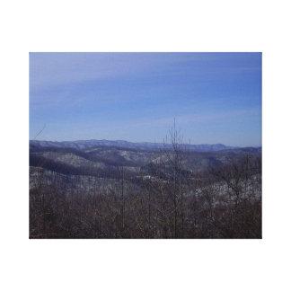 Winter Overlook Canvas Print
