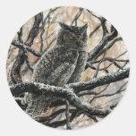 Winter Owl Classic Round Sticker