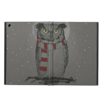 Winter owl iPad air case