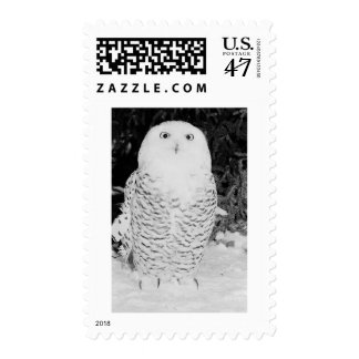 Winter Owl Postage