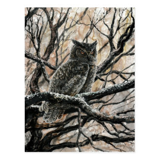 Winter Owl Postcard