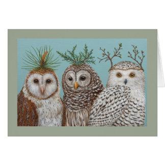 Winter Owls greetin card